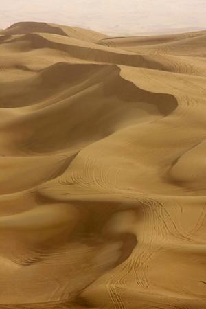 Sand Dunes, Dubai, United Arab Emirates, Middle East