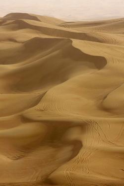 Sand Dunes, Dubai, United Arab Emirates, Middle East by Balan Madhavan