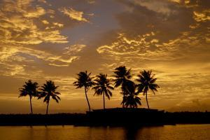 Sunset over the Backwaters, Alleppey, Kerala, India, Asia by Balan Madhavan
