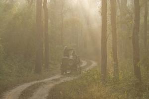 Tourists on Morning Safari, Kanha, Madhya Pradesh, India, Asia by Balan Madhavan