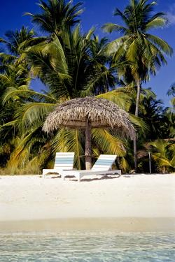 Virgin Beach and Sunshades, Bangaram, Lakshadweep Islands, India, Indian Ocean, Asia by Balan Madhavan