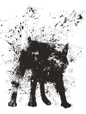 Wet Dog by Balazs Solti