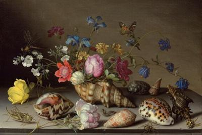 Flowers, Shells and Insects on a Stone Ledge by Balthasar van der Ast
