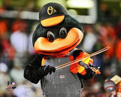 Baltimore Orioles Photo
