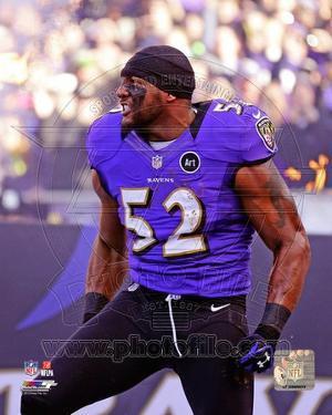 Baltimore Ravens - Ray Lewis Photo