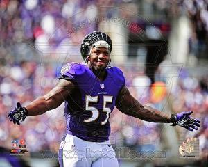 Baltimore Ravens - Terrell Suggs Photo