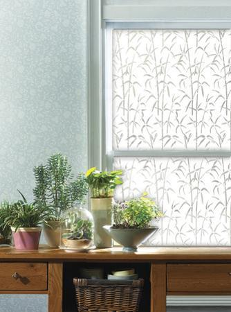 Bamboo Window Privacy Film