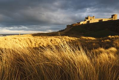 https://imgc.allpostersimages.com/img/posters/bamburgh-castle-and-marram-grass-ammophila-arenaria-lit-by-golden-evening-light_u-L-PQ8M1N0.jpg?p=0