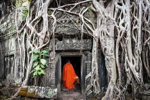 Monk in Angkor Wat Cambodia. Ta Prohm Khmer Ancient Buddhist Temple in Jungle Forest. Famous Landma by Banana Republic images