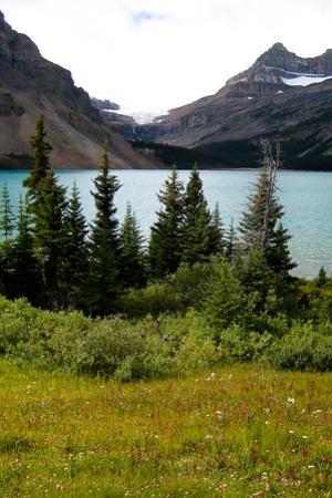 Banff Lake Photo Print Poster