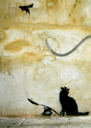 Cat by Banksy