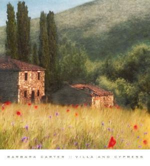 Villa and Cypress by Barbara Carter