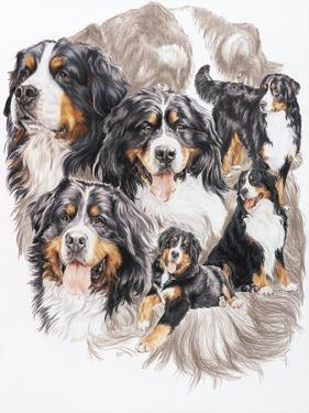 Bernese Mountain Dog with Ghost by Barbara Keith