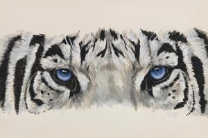 Eye-Catching White Tiger by Barbara Keith
