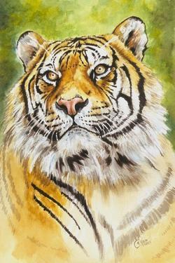 Sumatran Tiger by Barbara Keith