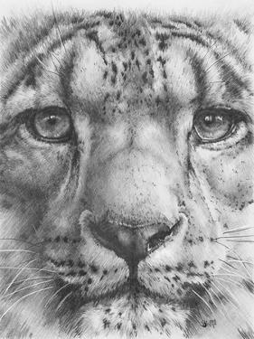 Up Close Snow Leopard by Barbara Keith