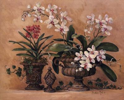 An Orchid Renaissance by Barbara Mock