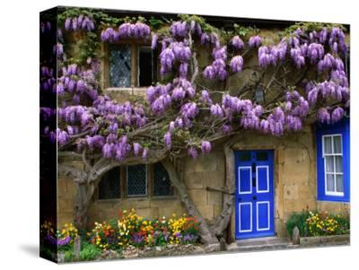 Cottage with Wisteria in Flower, Broadway, United Kingdom by Barbara Van Zanten