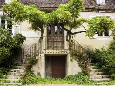 Double Stairway Leading into House by Barbara Van Zanten