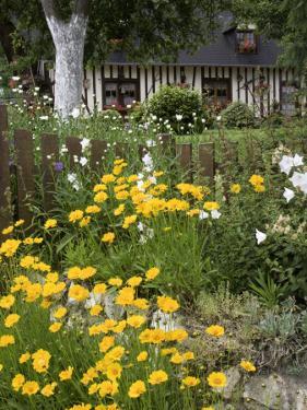 Exuberant Garden and Half-Timbered Cottage in Marais Vernier Region by Barbara Van Zanten
