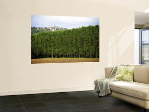 Hilltop Village of Frontenac with Stand of Trees in Foreground by Barbara Van Zanten