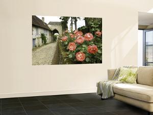 Roses and Archway on Rue Du Chateau in Gerberoy by Barbara Van Zanten