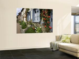Roses and Flowers and Half-Timbered Houses Along Rue Du Logis Du Roy by Barbara Van Zanten
