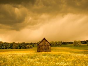 Barn in a Field of Wildflowers with Storm Clouds, Baden-Wurttemberg, Germany