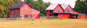 Barn in a field, Route 34, Colts Neck Township, Monmouth County, New Jersey, USA
