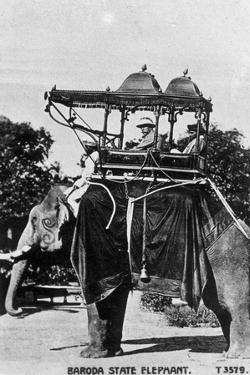 Baroda State Elephant, India, 20th Century