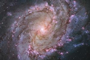 Barred Spiral Galaxy Messier 83