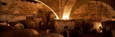 Barrels in a Winery, La Garriga, Barcelona, Catalonia, Spain