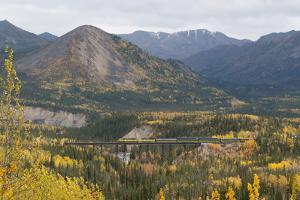 A Train Travels across a Bridge in the Fall in Alaska by Barrett Hedges