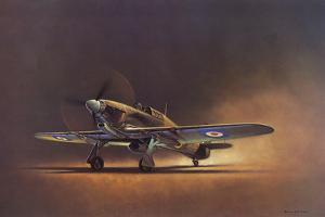 Hawker Hurricane (2D No.6 Squadron) by Barrie A F Clark
