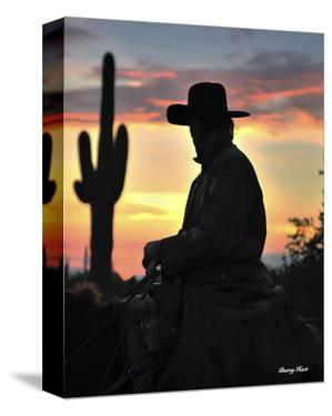 Arizona Cowboy by Barry Hart
