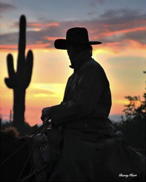 Arizona Cowboy by Barry Hart