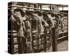 Bareback Saddles by Barry Hart