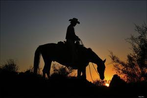 Chasin the Sun by Barry Hart