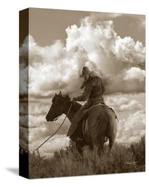 Colorado Cowboy by Barry Hart