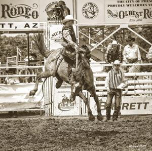 Rodeo by Barry Hart