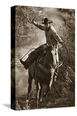 Trail Boss by Barry Hart