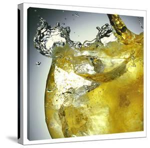 Splash by Barry Seidman