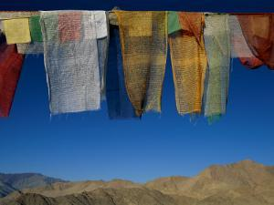 A Line of Multi-Colored Prayer Flags Sway in the Gentle Breeze in Ladakh by Barry Tessman