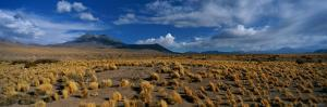 A Wide-Angle View of Altiplano, Chile by Barry Tessman
