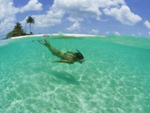 A Woman Snorkels in the Clear Blue Sea by Barry Tessman