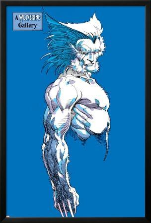 Wolverine Classic V1: Wolverine by Barry Windsor-Smith
