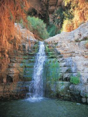 Shulamit Fall at En Gedi Reserve, Israel by Barry Winiker