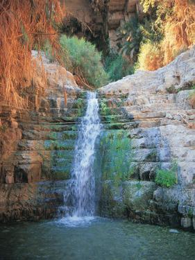 Shulamit Fall at En Gedi Reserve, Israel by Barry Winiker