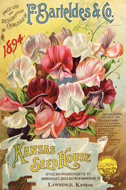 Barteldes Catalog Lawrence KS