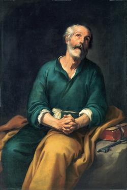 Saint Peter in Tears, C. 1655 by Bartolomé Estebàn Murillo